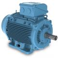 Bild 1 / Picture 1: WEG W22-Motor